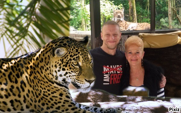 Pas sunu sveciose Anglija-Dudley zoological Gardens